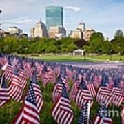 Boston Common Flags Art Print