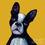 Boston Terrier On Yellow Art Print