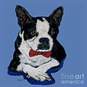 Boston Terrier With A Bowtie Art Print