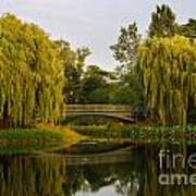 Botanic Garden Bridge At Dusk Art Print