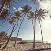 Bottom Bay Tropical Beach In Barbados Caribbean Art Print