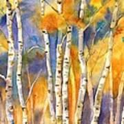 Boulder Aspens Art Print