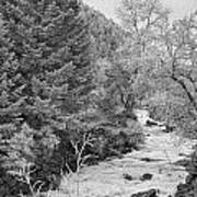 Boulder Creek Winter Wonderland Black And White Art Print