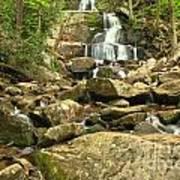 Boulders Logs And Lower Laurel Falls Art Print