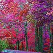 Bountiful Color Art Print
