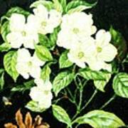 Bouquet In White Art Print