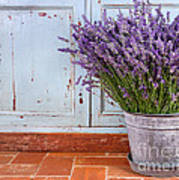 Bouquet Of Lavender In A Rustic Setting Art Print