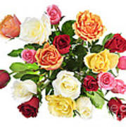 Bouquet Of Roses From Above Art Print