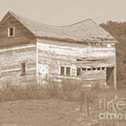 Bowed And Lonely Barn Art Print