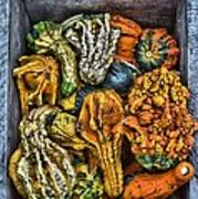 Box Of Gourds Art Print