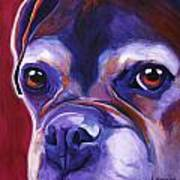 Boxer - Wallace Art Print by Alicia VanNoy Call