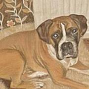 Boxer Dog George Art Print by Faye Symons