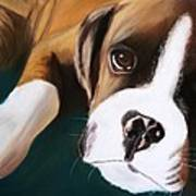 Boxer Art Print by Michele Turney