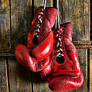 Boxing Gloves - Now Retired Art Print