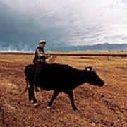 Boy Sitting Cow In Field Art Print