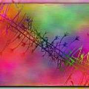 Branches In The Mist 24 Print by Tim Allen