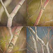 Branches Times Four Art Print by Bonnie Bruno