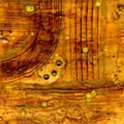 Brass Tokens Art Print