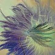 Breath In Wings  Art Print