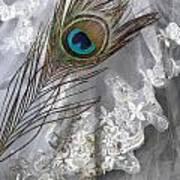 Bridal Veil Art Print