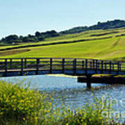 Bridge At Charmouth Art Print