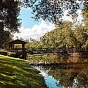 Bridge At Sawgrass Park Art Print