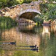 Bridge At Stow Lake Art Print