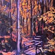 Bridge In Woods Near Pandapas Art Print