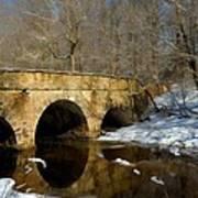 Bridge In Woods Art Print
