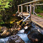 Bridge Over A Mountain Stream Art Print