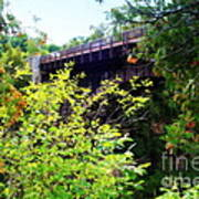 Bridge Over Ausable Chasm Art Print