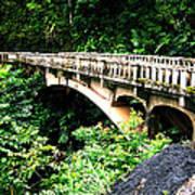 Bridge To Hana Maui Art Print