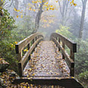 Bridge To Rough Ridge 07 Art Print