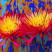 Bright Colorful Mums Art Print