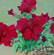 Red Flowers Art Brilliant Petunias Bright Floral  Art Print