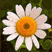 Bright Yellow And White Daisy Flower Abstract Art Print