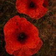 Brocade Textured Poppies Art Print