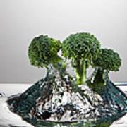 Broccoli Freshsplash Art Print
