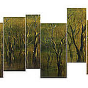 Broken Forest Art Print