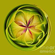 Bromiliad Orb Art Print