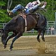 Bronco Cowboy Art Print