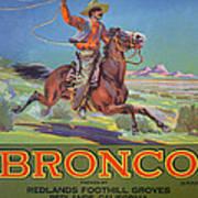Bronco Oranges Art Print by American School