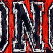 Broncos Print by David G Paul