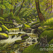 Brook In The Forest Art Print