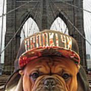 Brooklyn Dog Art Print