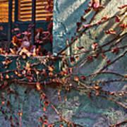 Brooklyn In Fall 2 Art Print