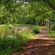 Brookside Garden Walk Art Print