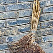 Broom, China Art Print