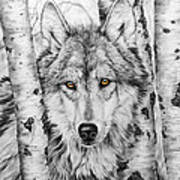 Brother Wolf Art Print