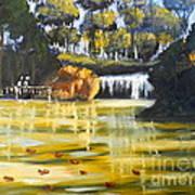 Brown Ducks Near The Waterfall Art Print